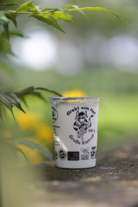 Joghurt Milchhof Große Kintrup
