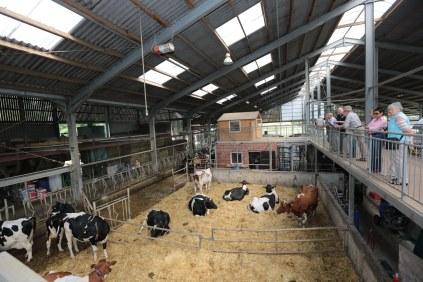 Besucherterrasse mit Blick auf den Stall