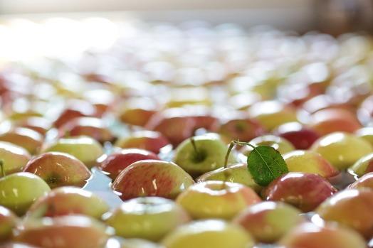 Äpfel im Wasserbad