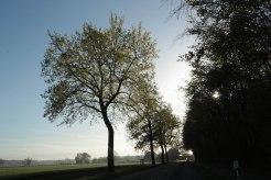 Die Sonne geht auf in Lüdinghausen