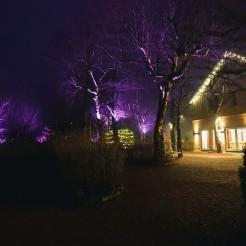 Hohen Hagen im Winter