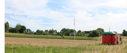Auf dem Feld Am Hang in Ochtrup darf selbst gepflückt werden.