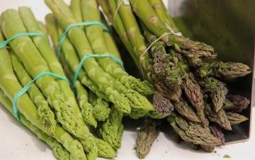 foodblogger paula markt1